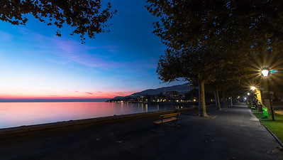Vevey Night Colors
