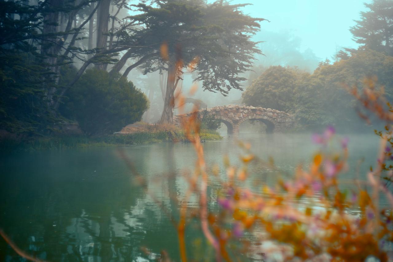 Stowe Lake San Francisco CA