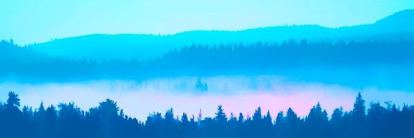 fantasy fog ...