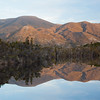 Moth Creek reflection