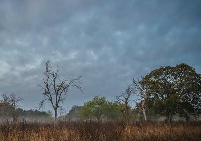 Crescent Bend Nature Park - Schertz, TX