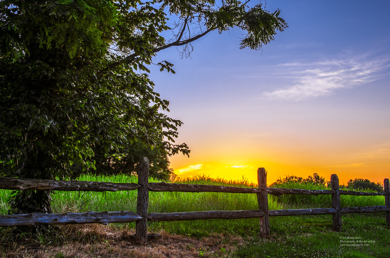 A Field, a Fence, and a Sunset