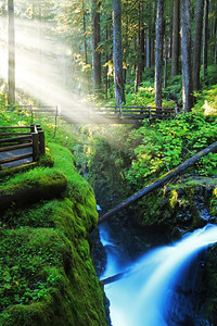Sunlight catches water droplets raising from Sol Duc Falls in the Olympic National Park
