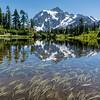 Mt Shuksan and Picture Lake
