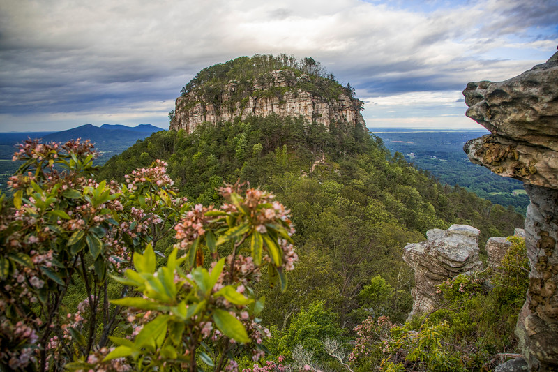 Spring at Pilot Mountain
