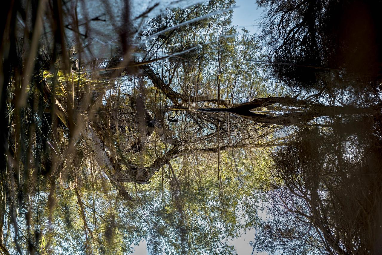 Joondalup lake WA Australia