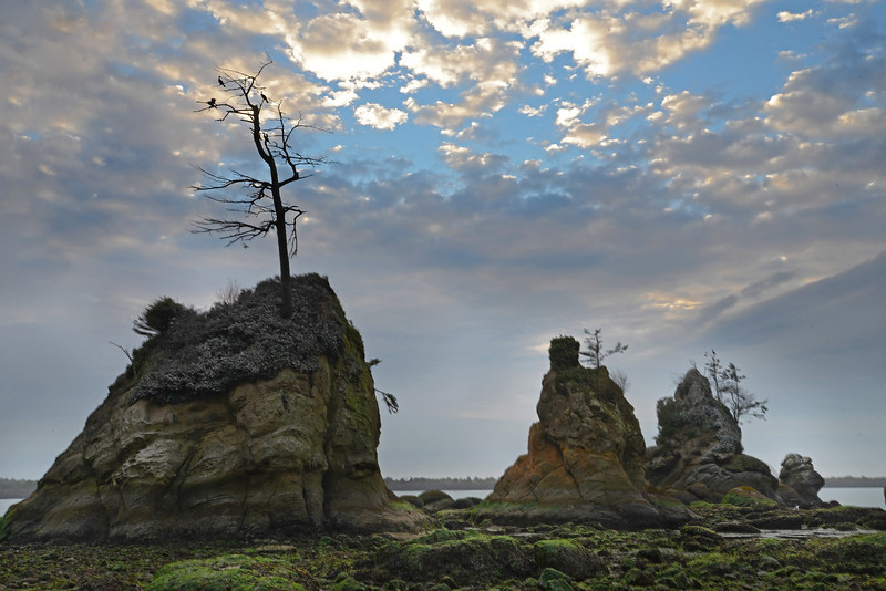 Three Graces Sunset, Oregon Coast