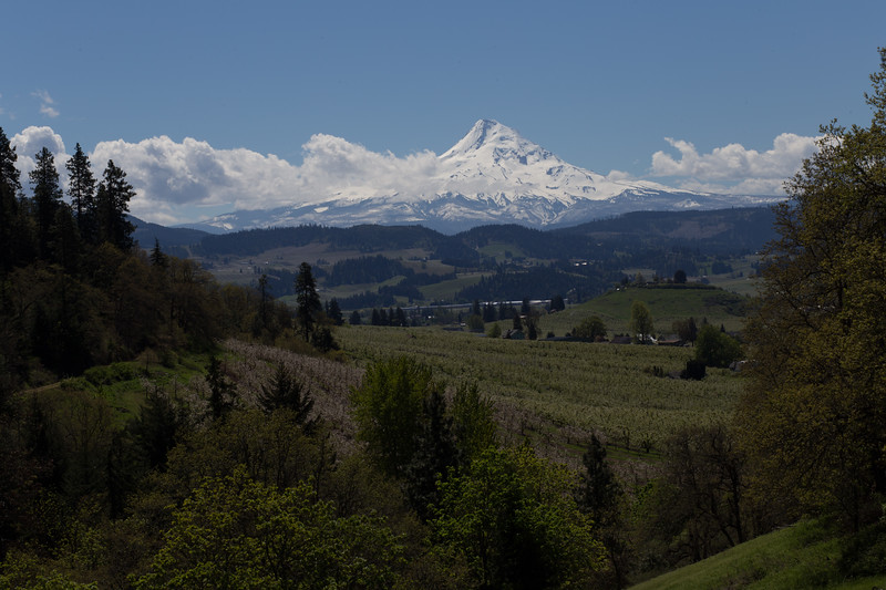 Hood River, Oregon in the Springtime.