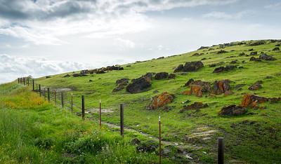 Hillsides of Planada