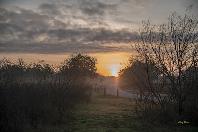 Sunrise in Crescent Bend Nature Park