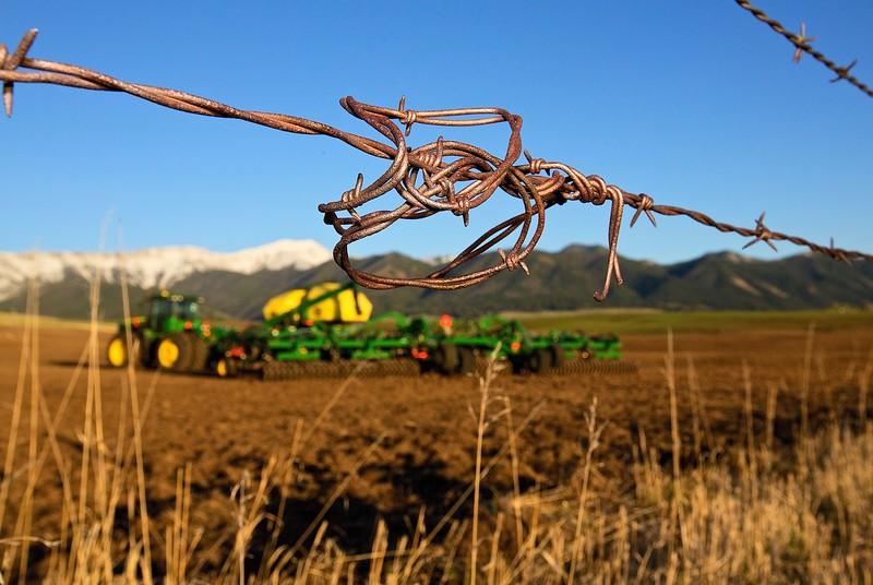 Wire #1 Near Bozeman, Montana
