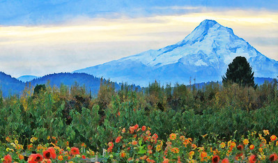 Mt. Hood and Flowers