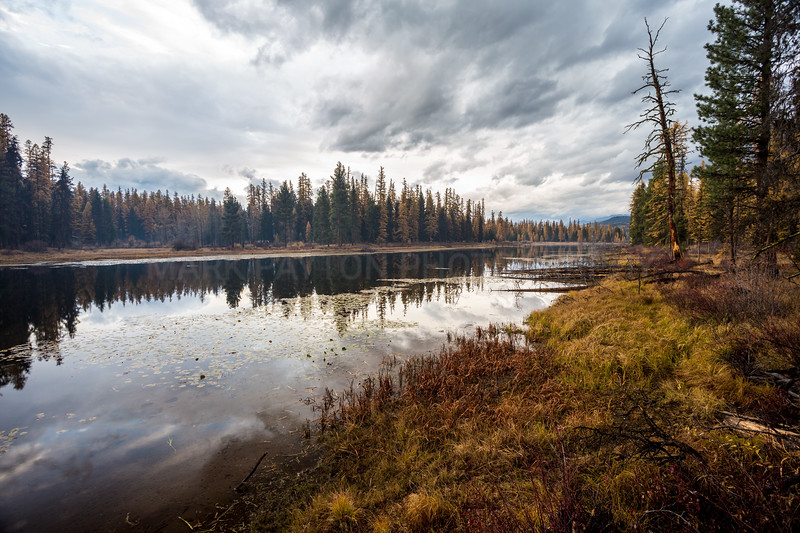 Clearwater River Reflections- Seeley Lake, MT. October 2012  Canon 5D MK III Canon EF 17-40mm f/4L USM
