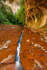 The Crack at The Subway, Zion National Park, Utah