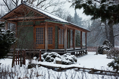 Japanese Garden in Saint Petersburg Botanical Garden, 2017.