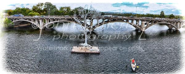 Silver Tree T-Lake-4
