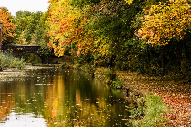 Rochdale Canal in Autumn