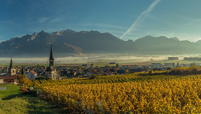 Vineyards in Vionnaz
