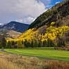 Vail Golf Club: Vail, Colorado: October 13, 2013