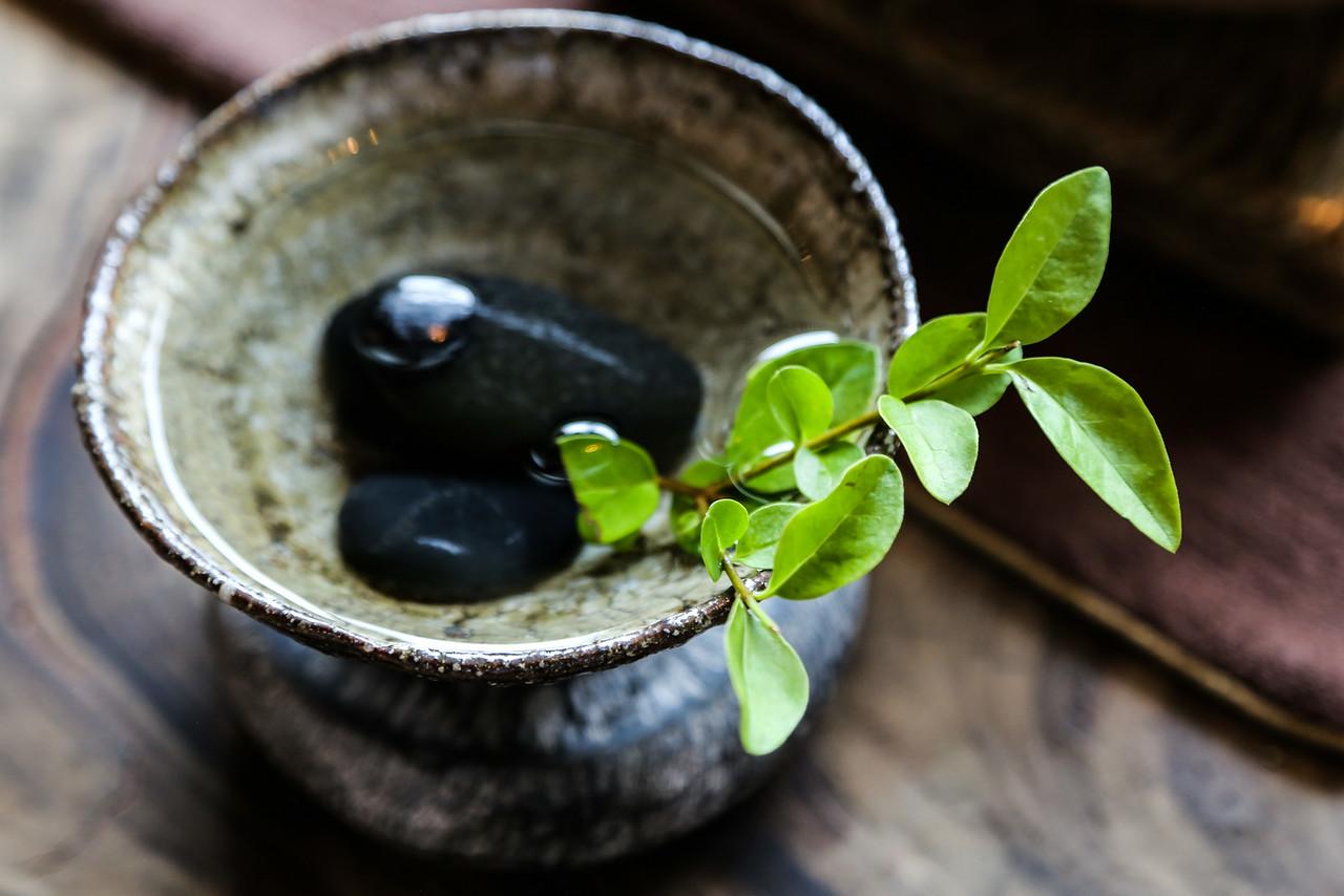 Shenzhen Tea