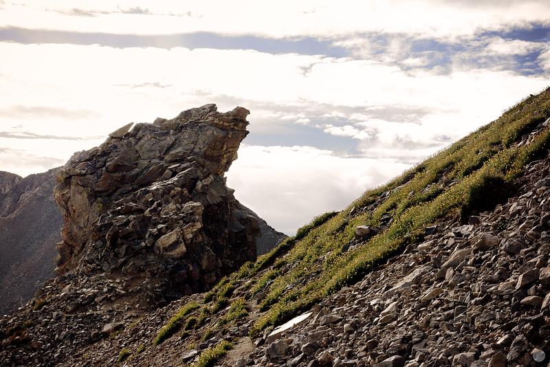 Grays Peak Ridge