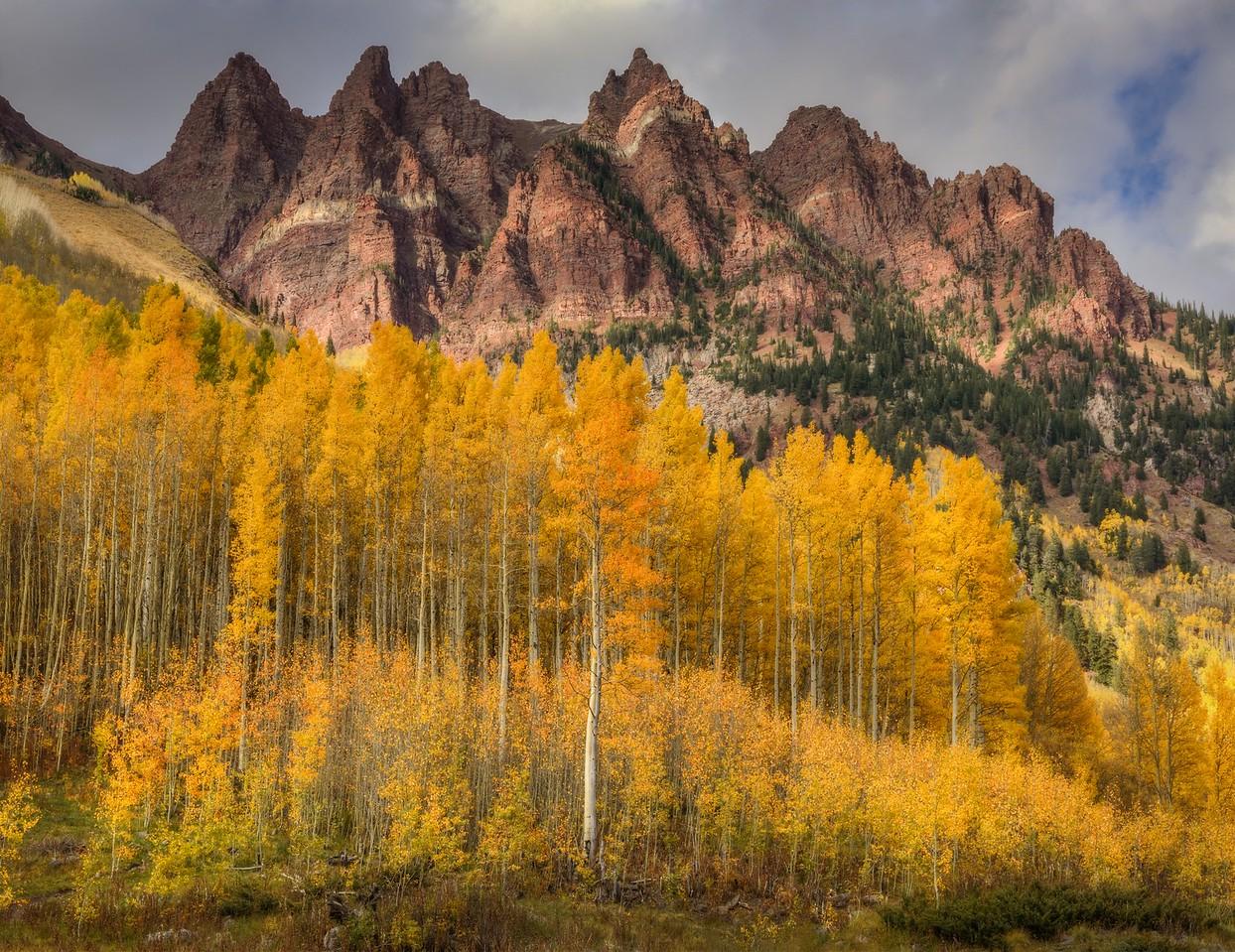 Mountain Aspen, Colorado
