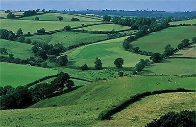 36  Devon View