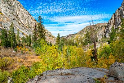 Deadman Creek Fall Colors - Sonora Pass