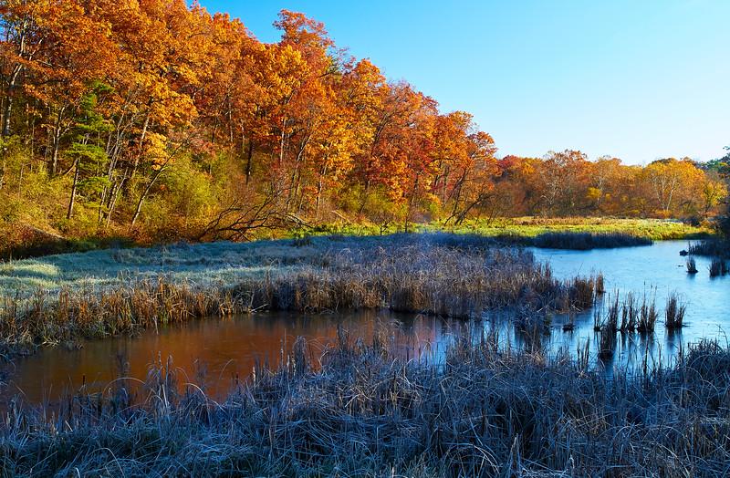 Grindstone Creek Fall