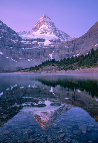 Mt Assiniboine Dawn Reflection