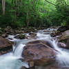 Big Creek Spring