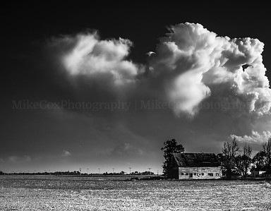 Monochrome Storm