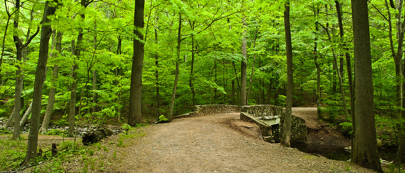 South Mountain Reservation, NJ