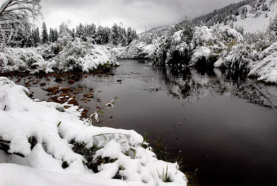 Early Snowfall - Rawah Creek, Colorado