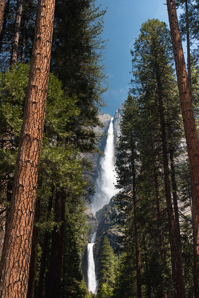 "Yosemite Falls, ""Best View"""