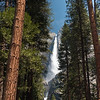 "Yosemite Falls, ""Best View"""