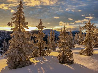 Dawn's First Light, Monarch Mountain, CO