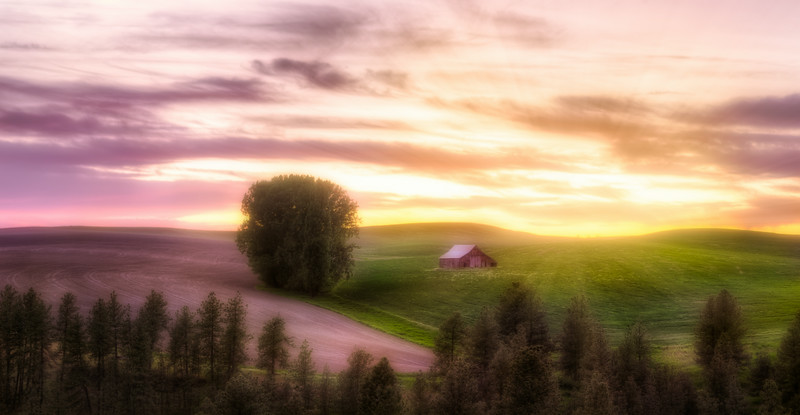 A Palouse Dream