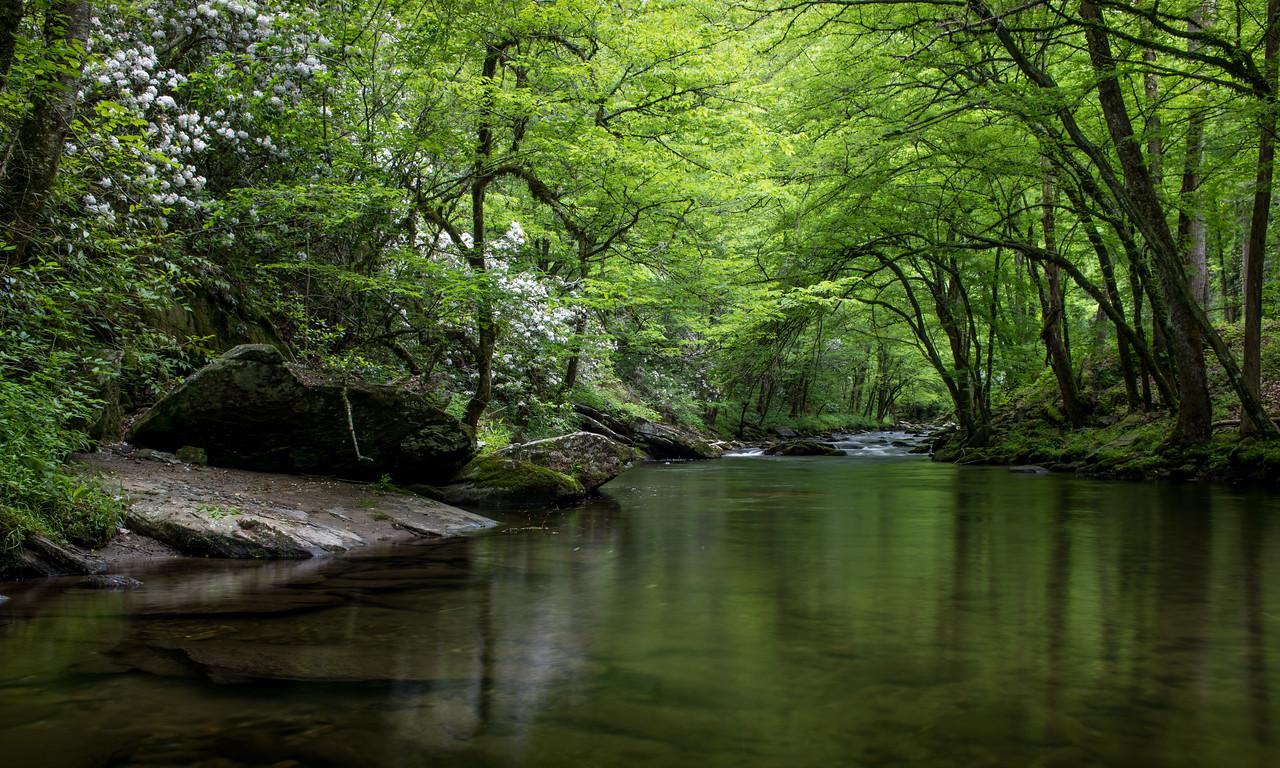 IMAGE: https://photos.smugmug.com/Landscapes/i-D5Jbrq8/0/de0ae0a2/X2/IMG_17294-170519-X2.jpg