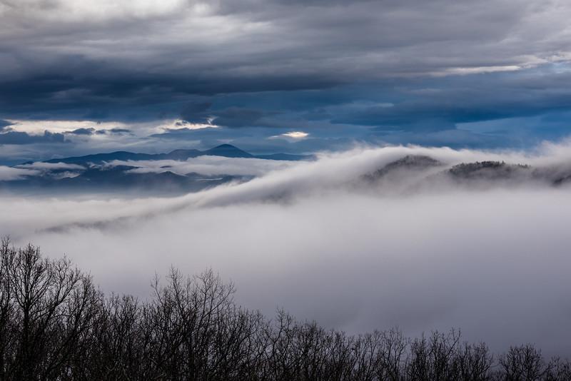 The Mist Rises