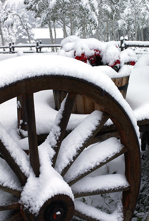 Old Wagon in the Snow - Rawah Ranch, Colorado