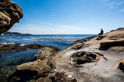Point Lobos, California II