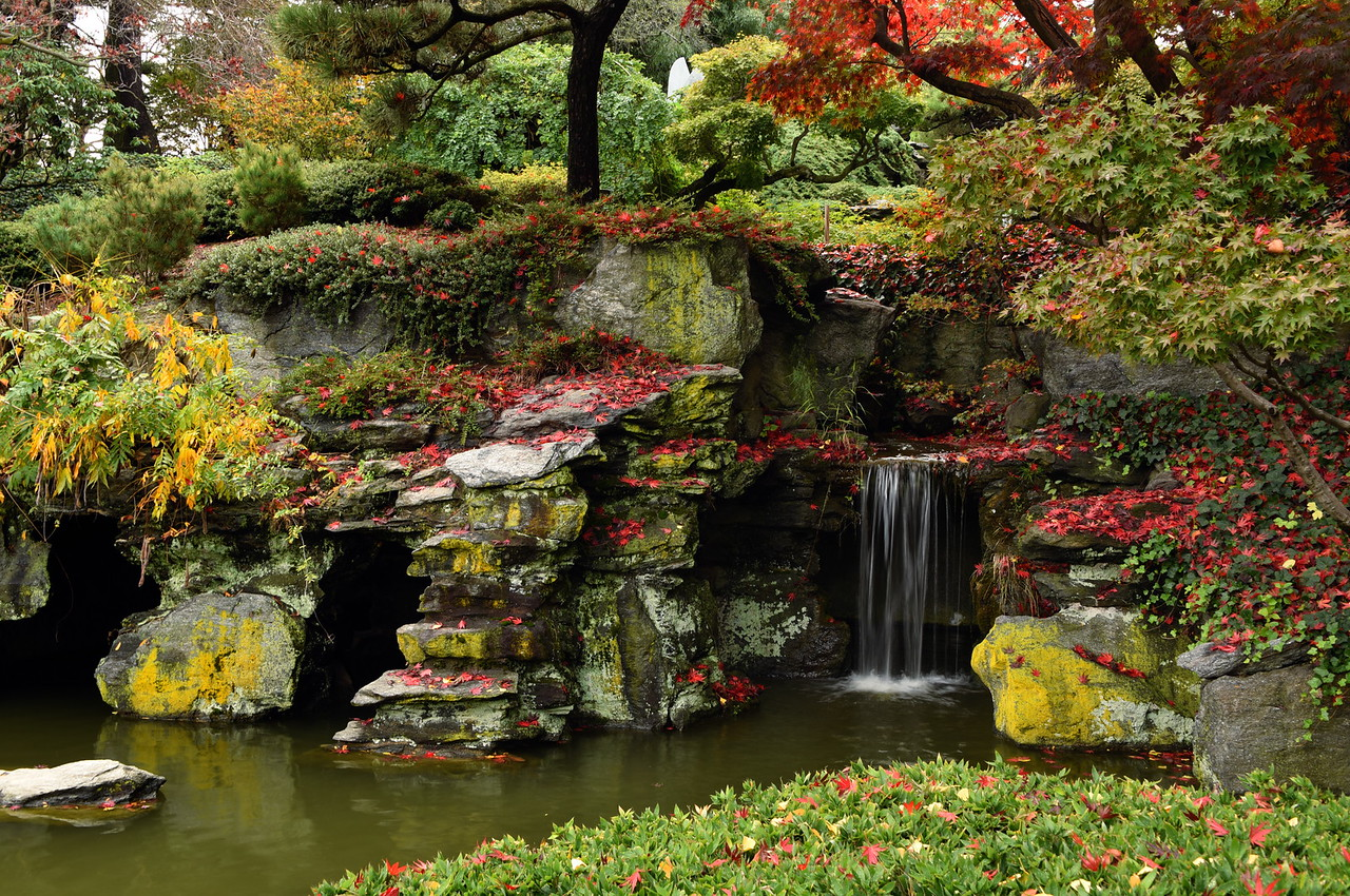Fall At the Turtle Grotto