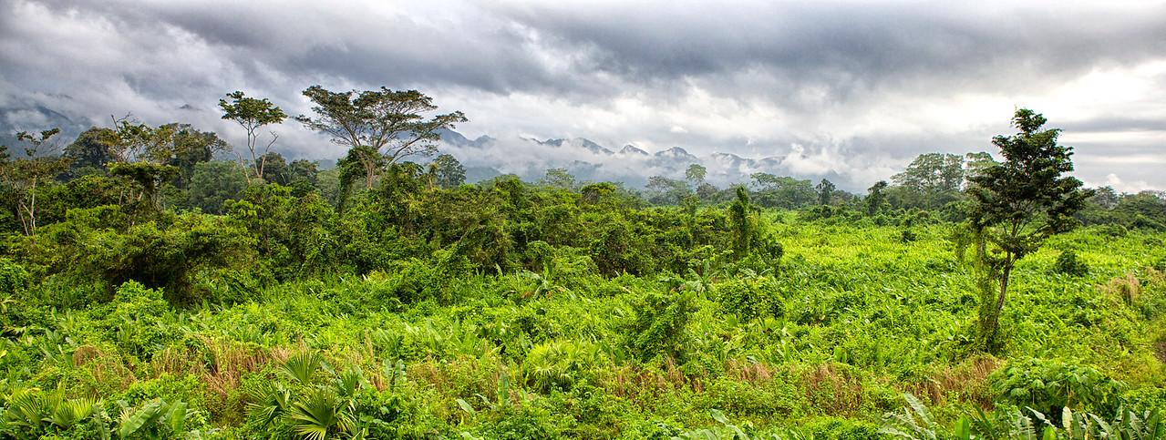 Maya Mountains, Belize. 2012