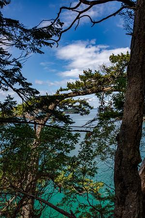 Deception Pass Tree Line View-2