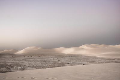 Lancelin sand dunes WA Australia