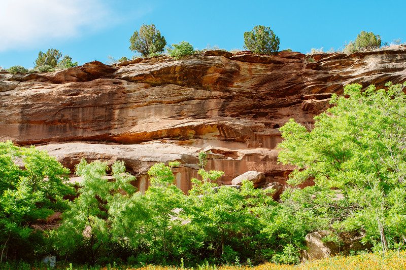 Nature's art gallery.  Canyon wall in the Palo Duro Canyon located in the Texas Panhandle.