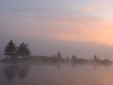 Foggy sunrise pastels.