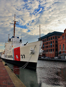Sole Survivor - USCGC Taney