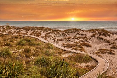 A beautiful sunset nature scene with a narrow wooden board walk winding through grassy sand dunes beside the Tasman Sea at Ship Creek in the West Coast Region of New Zealand's South Island.